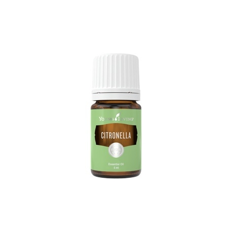 Citronella, ätherisches Öl Young Living