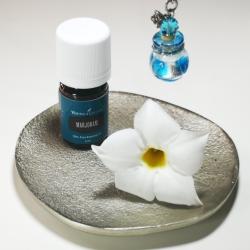 Majoran, 5 ml, Young Living ätherisches Öl als kosmetisches Mittel