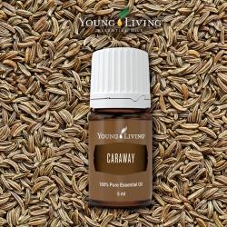 Kümmel, Young Living ätherisches Öl als kosmetisches Mittel